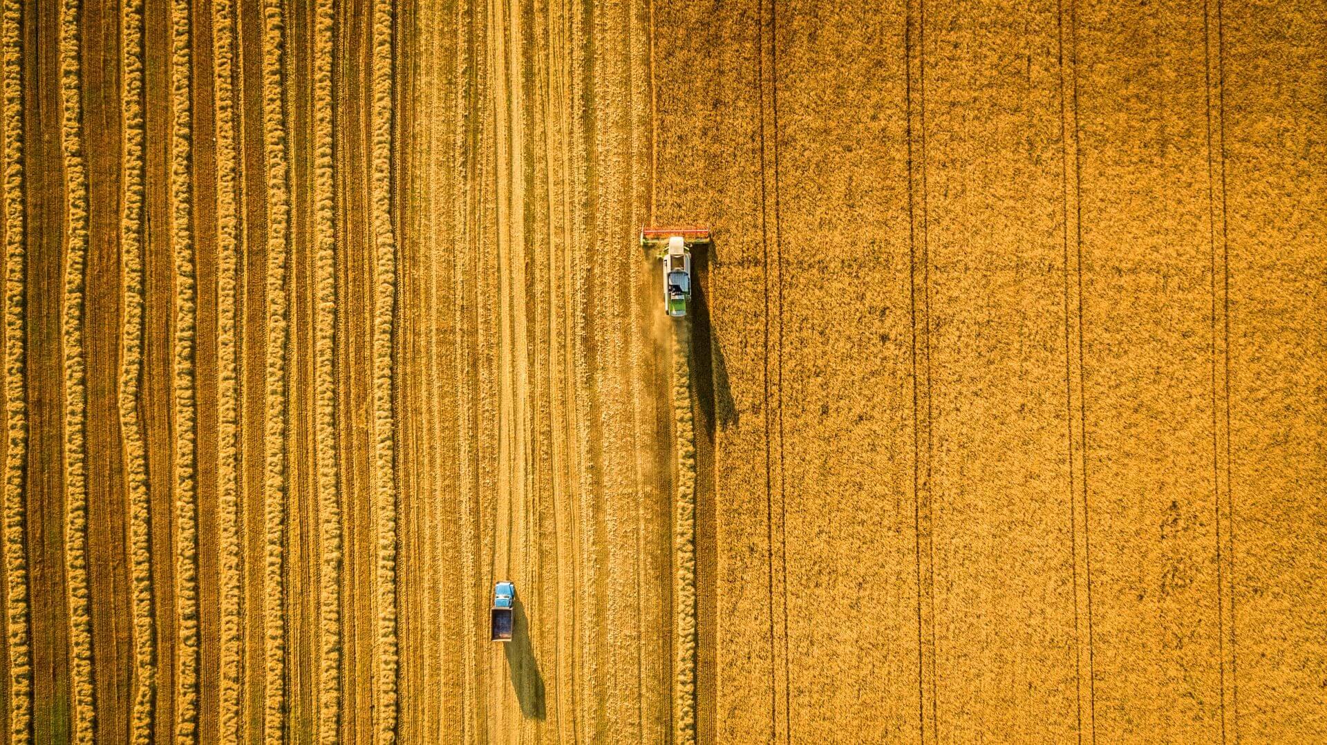Lavori agricoli conto terzi